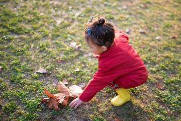 落ち葉を拾う少女