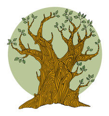Hand drawing tree
