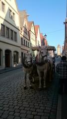 Kutsche mit Pferden und Kutscher