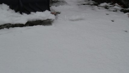 Shoveling Snow with Sound