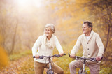 Active seniors riding bike