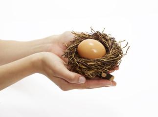 Hände halten Nest mit Ei 2