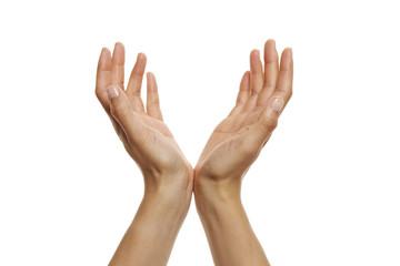 offene Hände, hochhalten 3