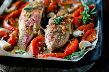 Red mullet baked with tomato, garlic and rosemary