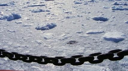 ice breaker trip