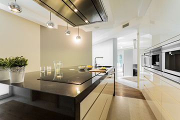 Countertop in designer kitchen