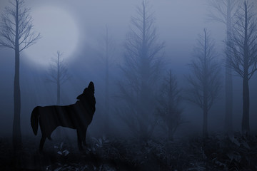Lone Wolf in a Dark Forest Under the Full Moon