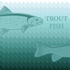 card  trout