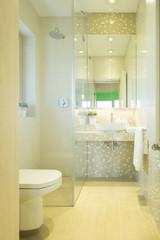 Luxury toilet in modern residence