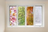 Window view of four seasons - 73954296