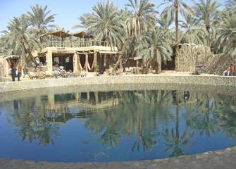 Egypte oasis de Siwa source Cléopâtre