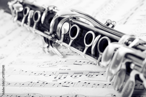 Musical notes and clarinet - 73970248