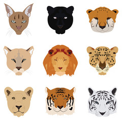 Set of Cat Tiger and Lion Vector and Icon