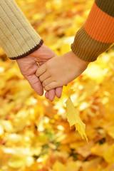 Hands against fallen leaves