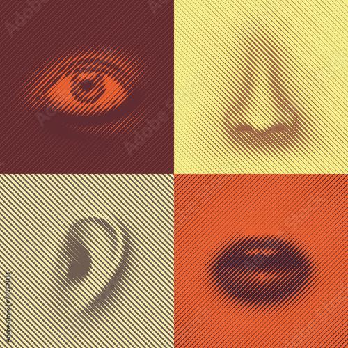 Fototapeta Parts of a face