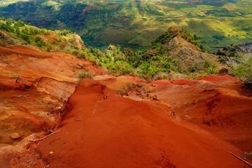 Stunning view into Waimea Canyon