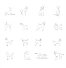 vector, symbol, illustration, dog