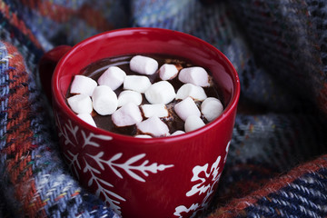 Cup of hot chocolote with marshmallows