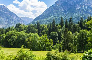 Mountainous landscape in summer in Germany.