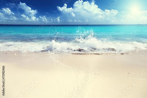 canvas print picture sand of beach caribbean sea
