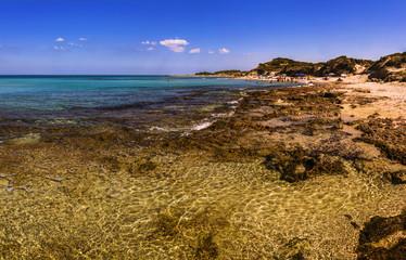 Costa del Salento: riserva di Torre Guaceto.- (Puglia) ITALIA-