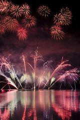 Firework ignis brunensis