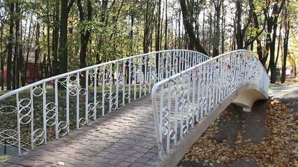 bridge in city park