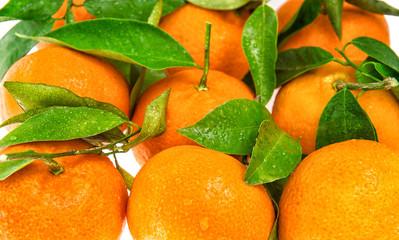 Orange mandarine with green leaves. Closeup of tangerine