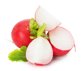 fresh radish isolated on the white background