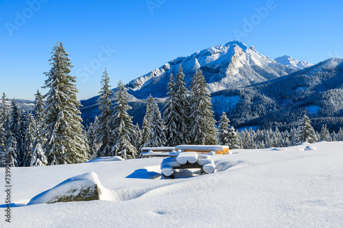 Fototapety, obrazy : Winter landscape of Rusinowa polana, Tatra Mountains, Poland