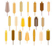 Ears of cereals and grains icons set
