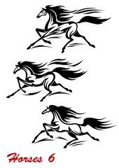 Fast galloping horses and mustangs