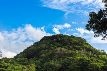 沖縄 本部町 円錐カルストの山々