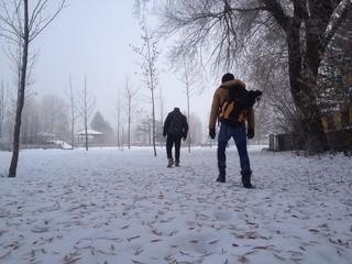 kış mevsiminde sonbahar