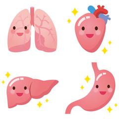 健康な臓器のイラスト