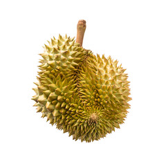 Durian isolated on white background with clipping path
