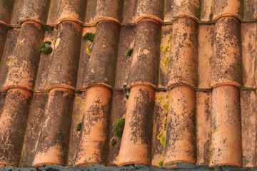 mousse sur toiture en tuile