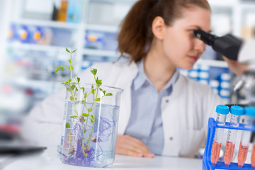 Woman in the laboratory of Plant Genetics