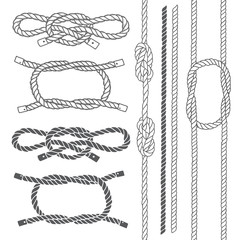 Set of marine rope, knots. Vector elements on a white background