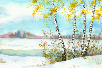 Birches in snowy field