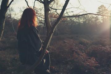 Woman sitting on tree admiring sunset