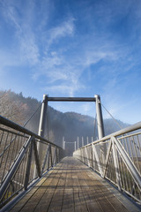metal and wooden bridge in black forest, Germany