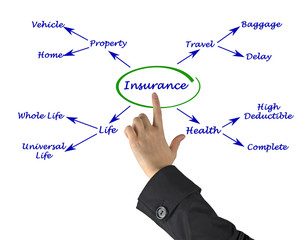 Diagram of insurance