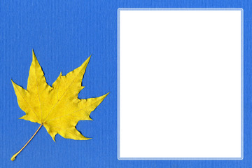 Yellow maple leaf on blue paper with space for text