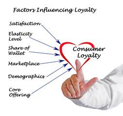 Factors Influencing loyalty