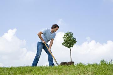 Mann pflanzt einen Baum