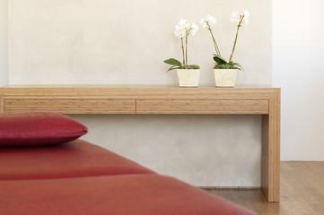 Zwei Topfpflanzen, Orchideen vor der Wand auf dem Regal mit roter Couch