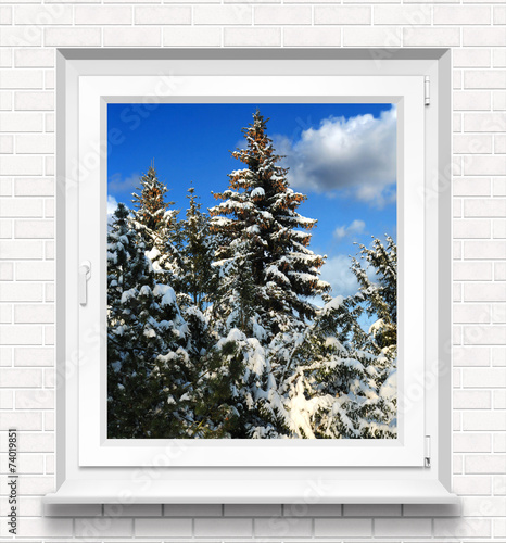 canvas print picture Fenster 9