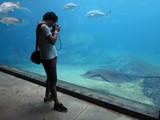 Besucher Aquarium UShaka Marine World Durban Südafrika
