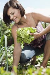 Deutschland, Bayern, Frau im Garten mit Salat, lächeln, Porträt